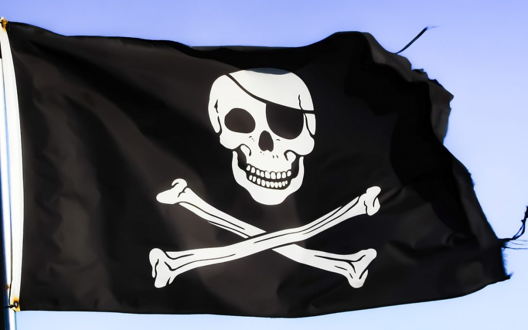 Port of Orillia Pirate Party